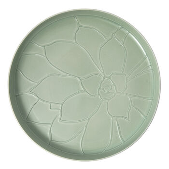 it's my home bandeja Socculent, 34 cm, verde/blanco